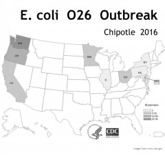 Infographic provided by cdc.gov